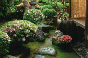 Sân vườn 4