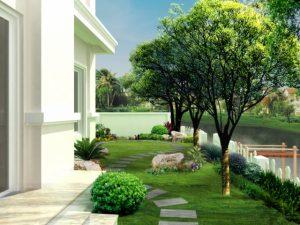 Sân vườn 14