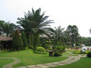 Sân vườn 17