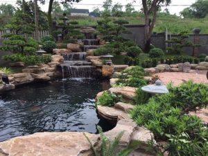 Hồ koi đá cổ thạch 2