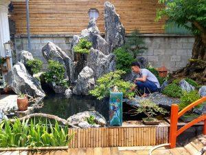 Hồ koi đá Ninh Vân