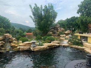 Hồ koi, thác nước đá cổ thạch vàng
